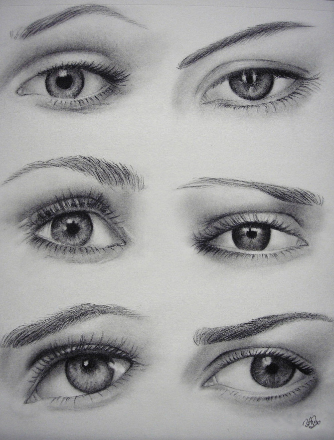 Gallery For gt Female Eyes Drawing